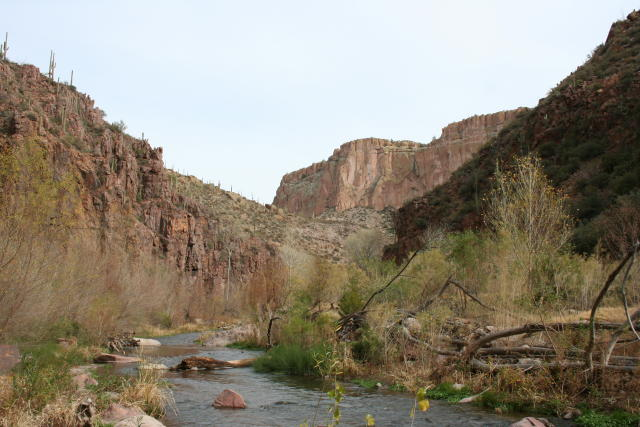 Near the entrance of Aravaipa Canyon