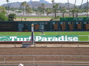 The finish line at Turf Paradise Racetrack