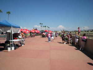 Next to the track at Turf Paradise Racetrack