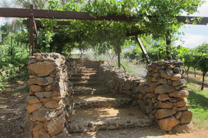 The grape arbor at Page Spring Cellars