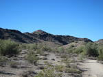 Scenery at South Mountain Park